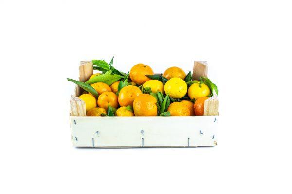 Citrus - mandarijnen-kistje