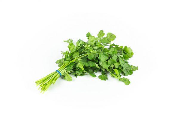 Herbs - koriander