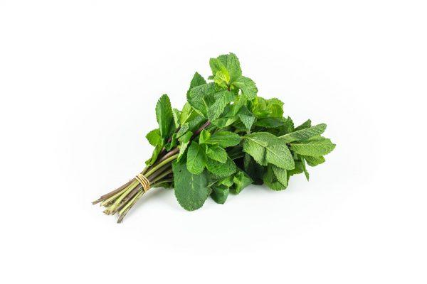 Herbs - munt