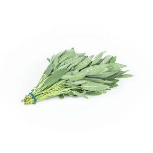 Herbs - salie