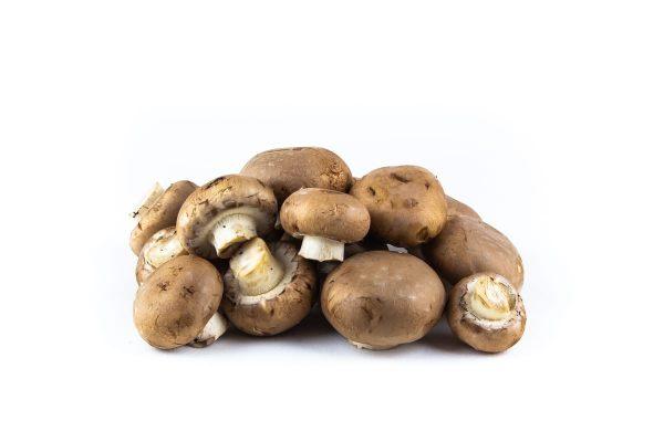 Mushroom - kastanje-champignon